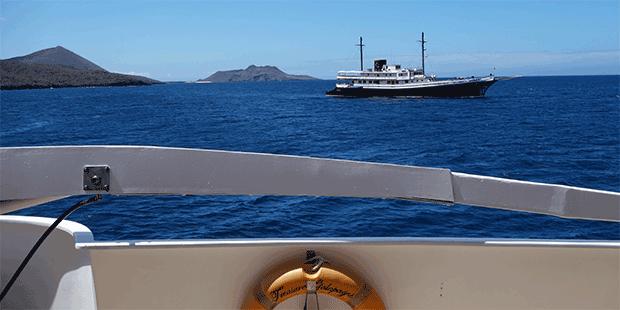 Kryssning på Galapagosöarna